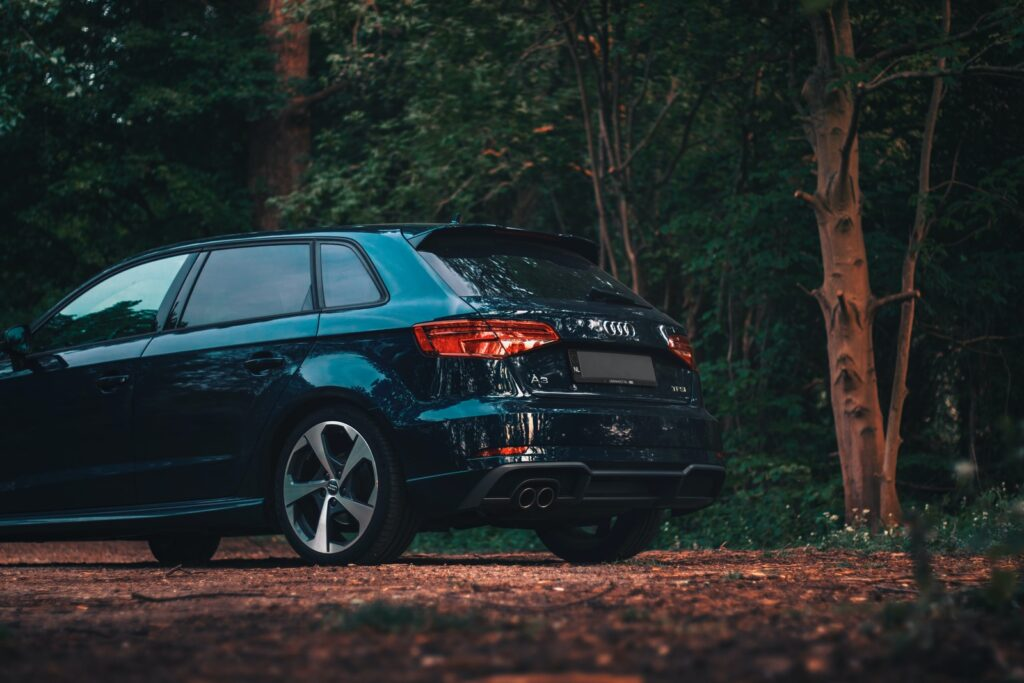 black honda car on forest during daytime
